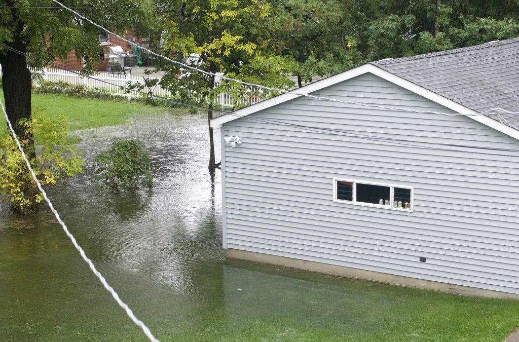 7 Ways to Deal with Lawn Flooding