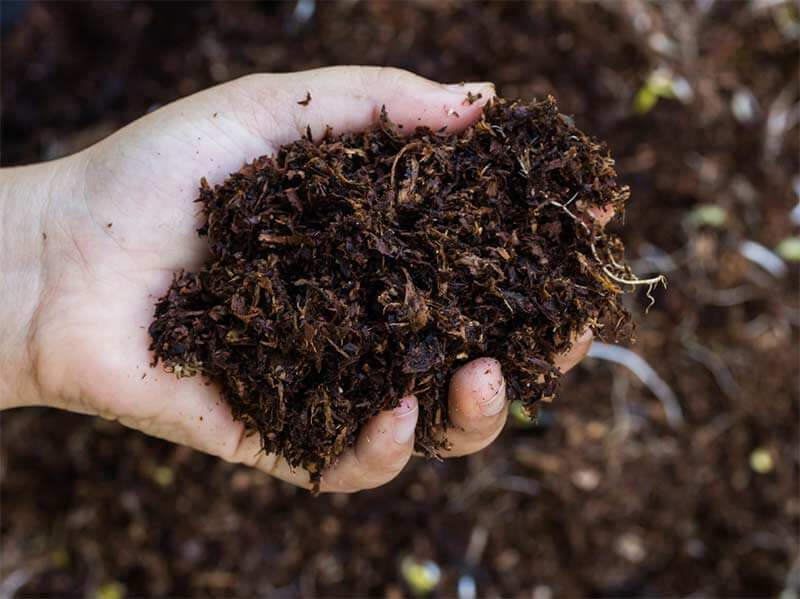 How to Keep Soil Healthy for Longer